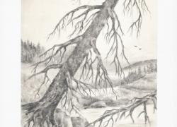 Šumava tužkou 3