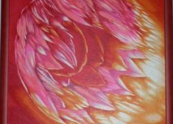 Pohádková Medúza