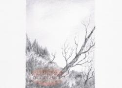 Šumava tužkou 29
